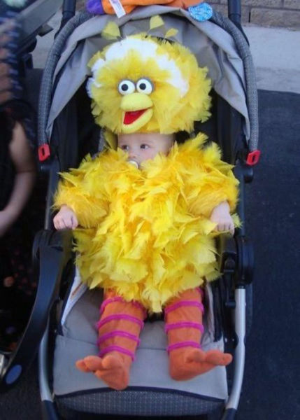 IRTI - funny picture #5994 - tags: baby prob big bird