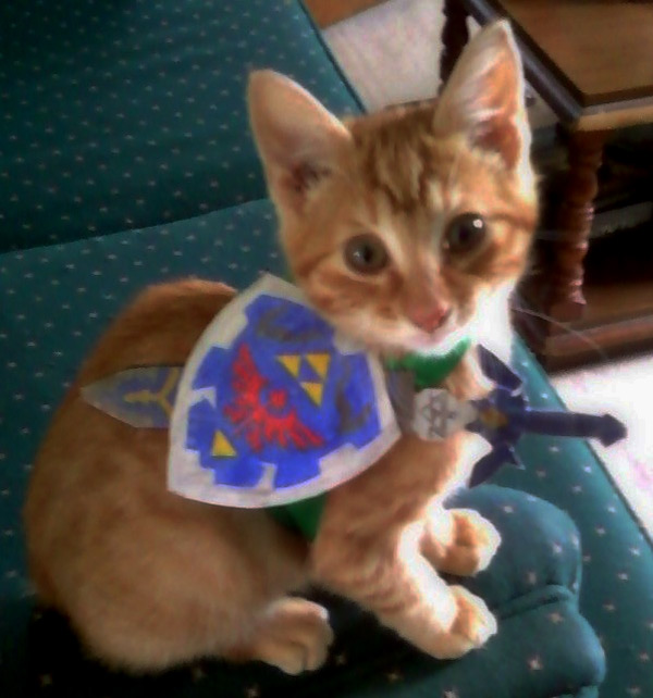 Kitten Link Costume Cat Zelda