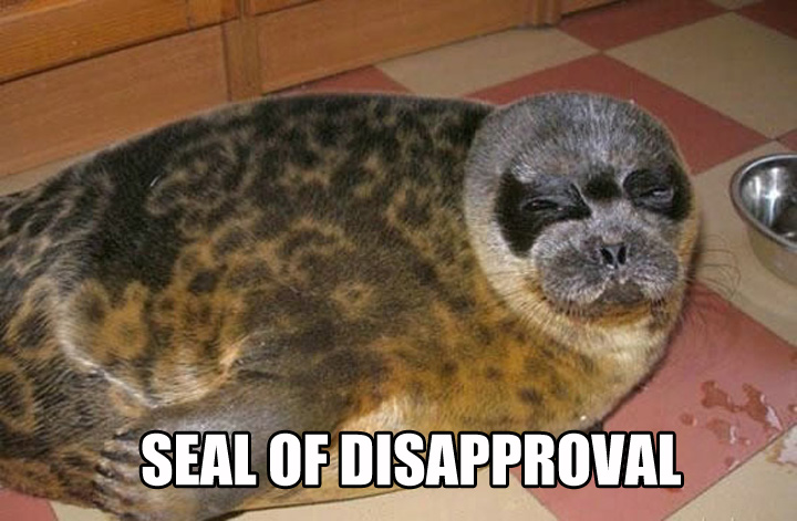 seal-of-disapproval-pet-not-impressed-1360795792b.jpg
