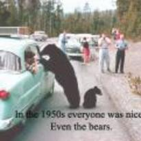 Radnom funny picture tags: 1950 everyone-was-nicer even-bears bear cars