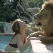 Radnom funny picture tags: Tipi-Hedren lion swimming-pool spraying-water mouth