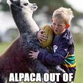 Radnom funny picture tags: alpaca out of knowhere rugby