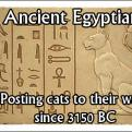 Radnom funny picture tags: ancient egyptians posting cats first