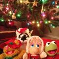 Radnom funny picture tags: angry cat christmas muppets rage