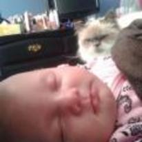 Radnom funny picture tags: angry cat watching baby sleep