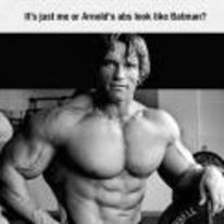 Radnom funny picture tags: arnold-schwarzenegger 6-pack abs-look-like-batman abs batman