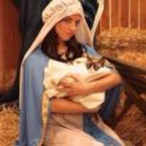 Radnom funny picture tags: aubrey-plaza grumpy-cat mary stable nativity