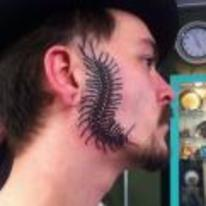 Currently trending funny picture tags: awful-tattoo centipede face side-of-face centipede-tattoo