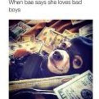 Radnom funny picture tags: black-twitter bae-says-she-likes-bad-boys dog gun money