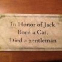 Radnom funny picture tags: born cat died gentleman plack
