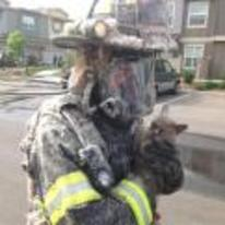 Radnom funny picture tags: cat unimpressed saved fireman firefighter