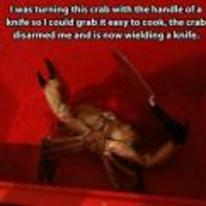 Radnom funny picture tags: crab wielding-a-knife disarmed level-1-RPG-character-behaviour level-up