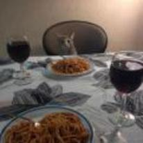 Radnom funny picture tags: dinner-with-bae cat meal eating Spaghetti
