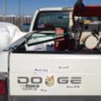 Radnom funny picture tags: dodge doge truck stickers wow