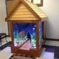 Radnom funny picture tags: dog dog-house fish-tank combo tank