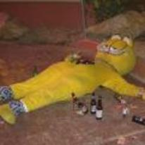 Radnom funny picture tags: drunk passed-out garfield costume beer