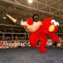 Currently trending funny picture tags: elmo wrestling slam tickle-this muppet