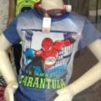 Radnom funny picture tags: fake spiderman t-shirt seems-legit the-amazing-tarantula