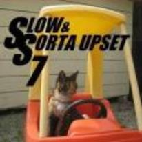 Radnom funny picture tags: fast-and-the-furious slow-and-sort-of-upset cat little-tykes car