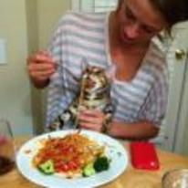 Radnom funny picture tags: feeding cat Spaghetti-Bolognese table girl