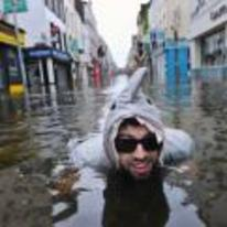 Radnom funny picture tags: flood shark costume shades water