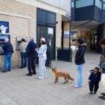 Radnom funny picture tags: fox line queue ATM cash-machine