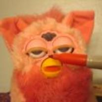 Radnom funny picture tags: furbie smelling sharpie permanent-marker high