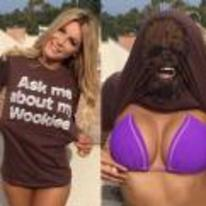 Radnom funny picture tags: girl t-shirt ask-me-about-my-wookie boobs bikini