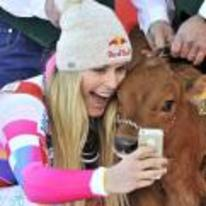 Radnom funny picture tags: girl-taking-selfie cow-selfie selfie-with-cow girl hat
