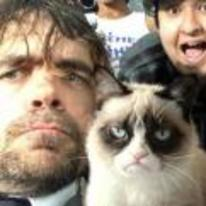 Radnom funny picture tags: grumpy-cat game-of-thrones sad peter-dinklage cat