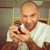Radnom funny picture tags: guardians-of-the-galaxy drax dave-batista holding raccoon