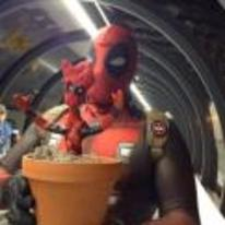 Radnom funny picture tags: guardians-of-the-galaxy groot deadpool-groot deadpool costume