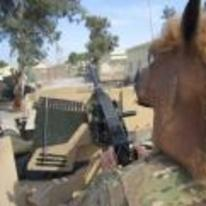 Radnom funny picture tags: iraq tank gunner horse-head mask