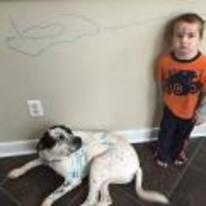 Radnom funny picture tags: kid draws-on-dog pens wall markers