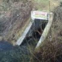 Radnom funny picture tags: legit ninja-turtles base sewer turtles
