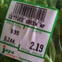Radnom funny picture tags: lettuce-green-af green-af lettuce black-twitter green