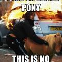 Radnom funny picture tags: london riot pony place horse