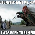 Radnom funny picture tags: never tame me wild bus