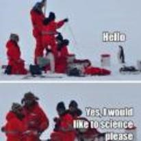 Radnom funny picture tags: penguin snow I-would-like-to-science science macro
