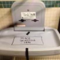 Radnom funny picture tags: place-sacrifice-here baby change diaper toilet