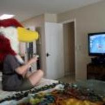 Radnom funny picture tags: playing skyward-sword zelda bird-head nintendo