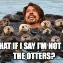 Radnom funny picture tags: pun im-not-like-the-others otters dave-grohl foo-fighters