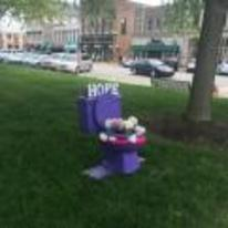 Radnom funny picture tags: purple hope toilet flowers outside