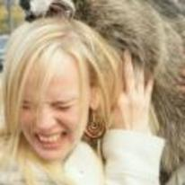 Radnom funny picture tags: raccoon biting girls head random