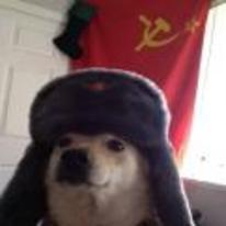 Radnom funny picture tags: russian dog doge communist russia