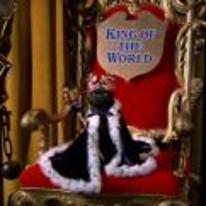 Radnom funny picture tags: sabrina cat king-of-the-world throne salem