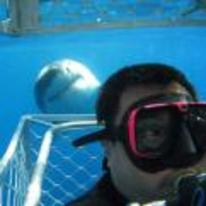Radnom funny picture tags: shark selfie photobomb picture diver