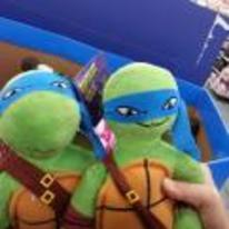 Radnom funny picture tags: smug looking turtle toy teddy