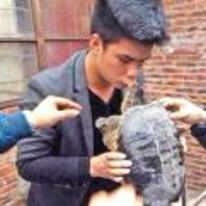 Radnom funny picture tags: snappo snapping-turtle biting guys lip