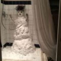 Radnom funny picture tags: snowman shower snow weird prank
